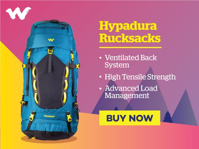 7b925d6f206 Rucksack Bags for Travel, Hiking & Trekking Online | Wildcraft